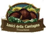 Amici della Castagna|Trecchina (PZ)